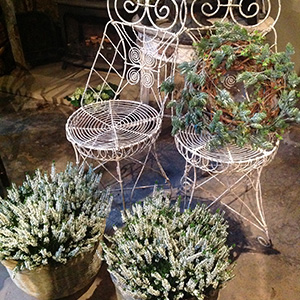 A pair of fine wire work garden or conservatory chairs.