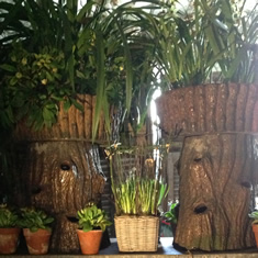 Faux bark tree trunk ceramic planters