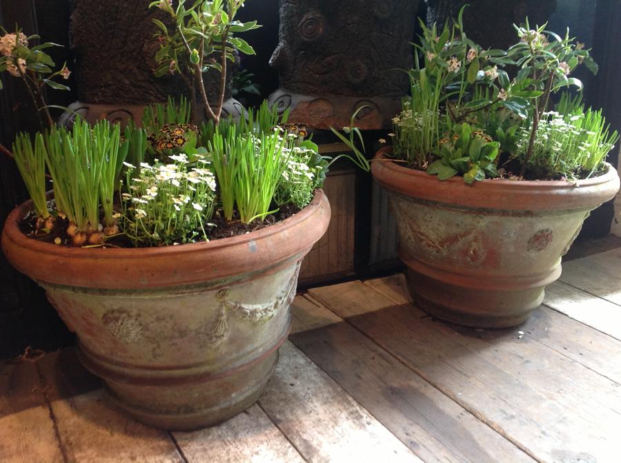 Terracotta Garden Furniture
